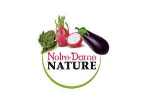Notre-Dame Nature